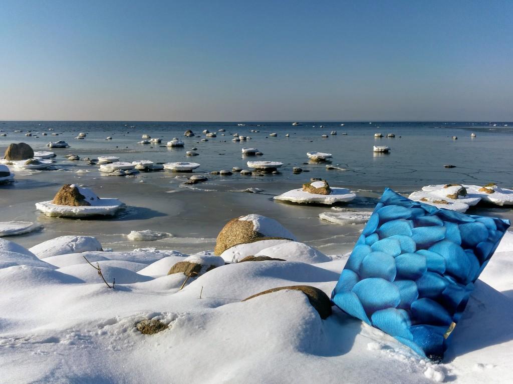 """""""Sinised kivid"""", Liivi Leppik"""