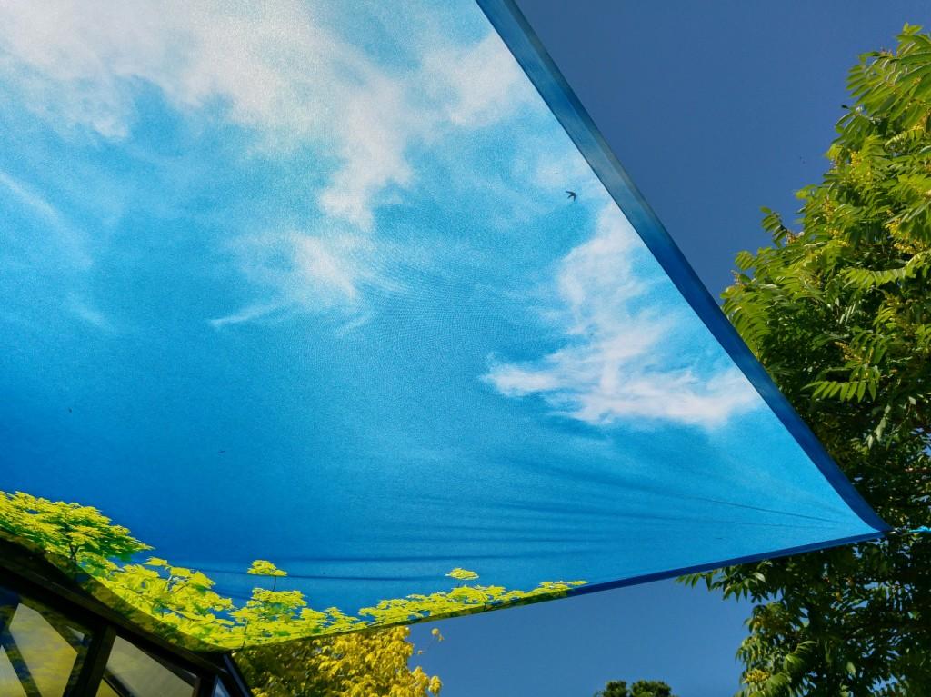 Päikesevari - 7 pääsukest, Liivi Leppik